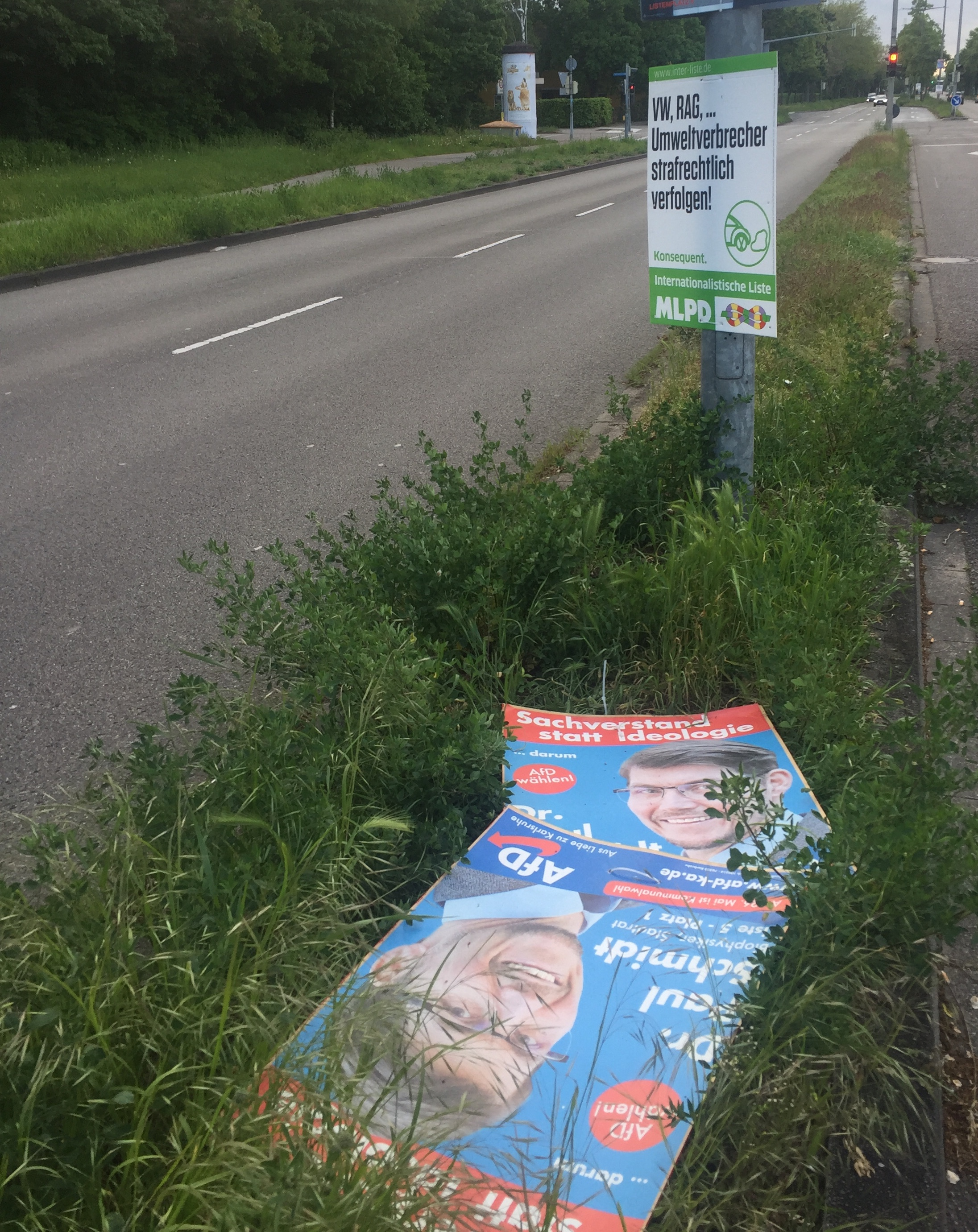 Zerstörte Wahlplakate der AfD in Karlsruhe