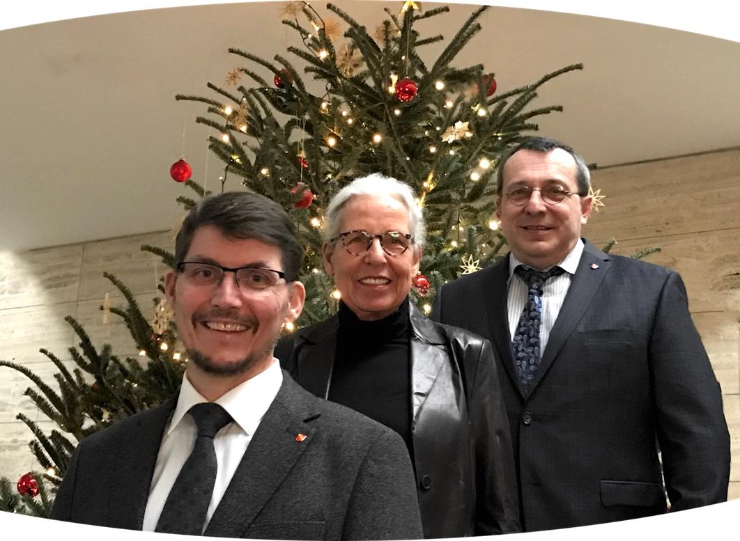 Bild Stadträte Weihnachtsbaum